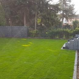 Großer Rollrasen im Garten