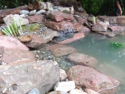 Teich mit kleinem Wasserfall