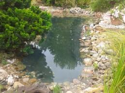 Teich mit Steinen